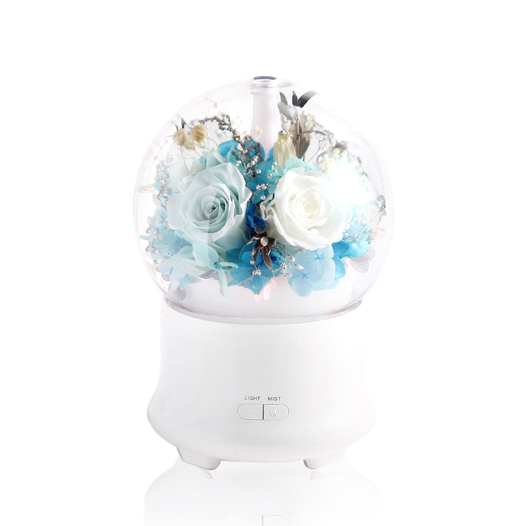 Aromatherapy Diffuser 香薰加濕器