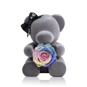 Eternal Rose Bear (Rainbow)|Forever Rose|Eternal Flowers|Léselle