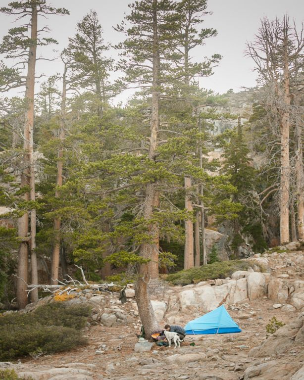 Desolation Wilderness • Sanborn Scout Field Log