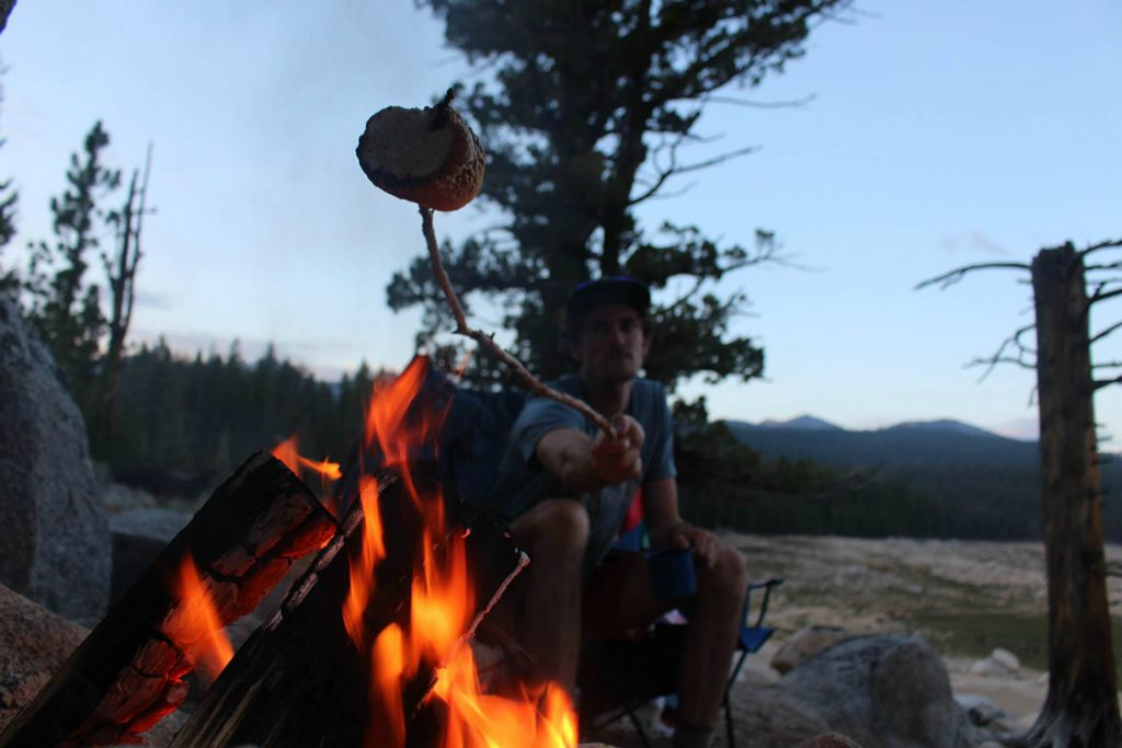 The Sierras • Sanborn Scout Field Log