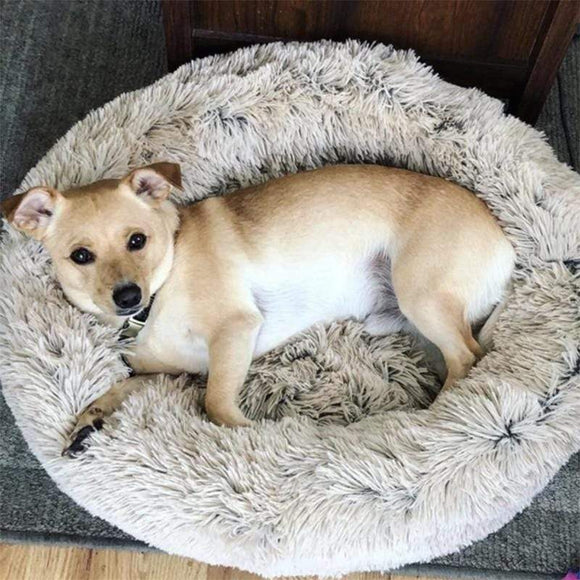 [NEW COLORS] Anti-Anxiety/Calming Fluffy Dog Bed/Cat Bed in Donut Shape To Calm Your Dog Anxiety - sloppylab