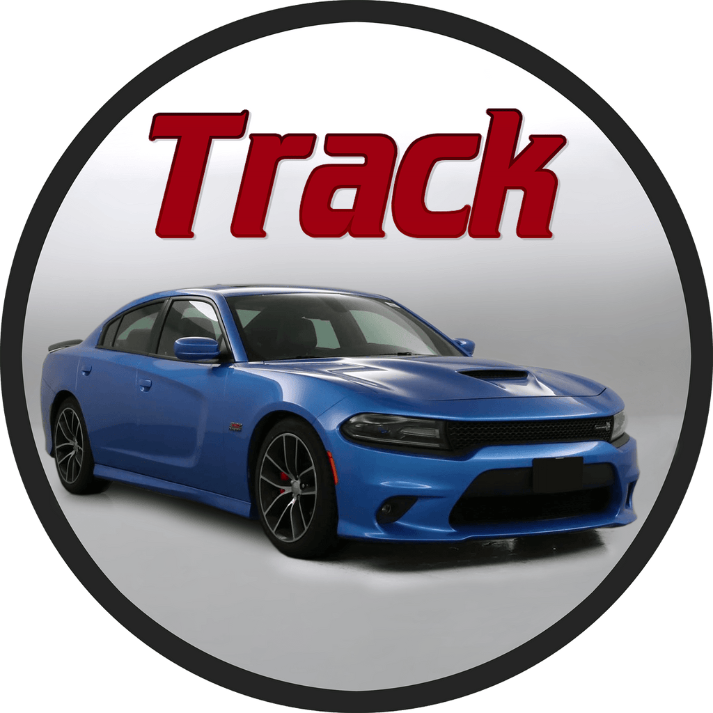 StripeSource Decals Racing Rally Stripes for Sale for Dodge Charger SRT Daytona R/T Track OEM Style