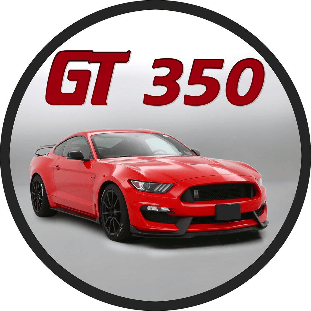 GT350 GT350r Mustang Ford Shelby Decals Racing Rally Stripes Graphics With Pinstripes Matte Glossy OEM Style 6 inch