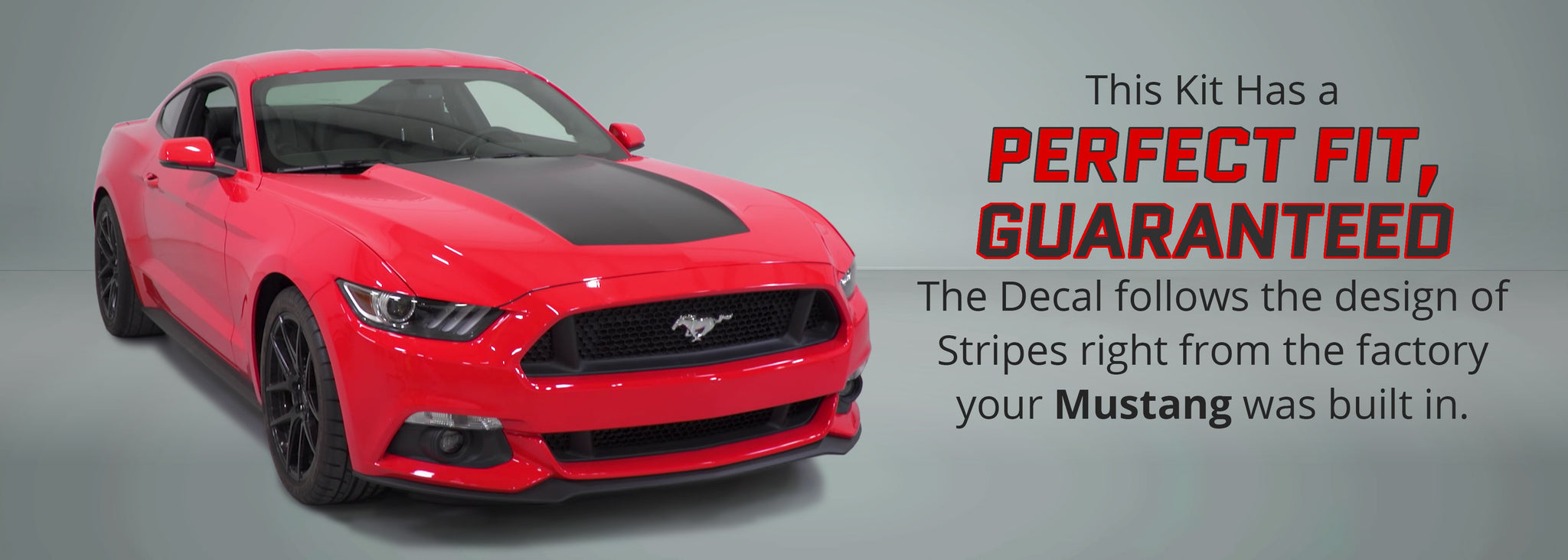 Ford Mustang Hood Decal (Two Different Versions) - Stripe Source