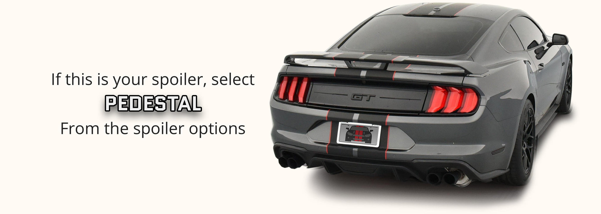 Ford Mustang Dual Rally Racing Stripes with Optional Pinstriping (2018-2021) - Stripe Source