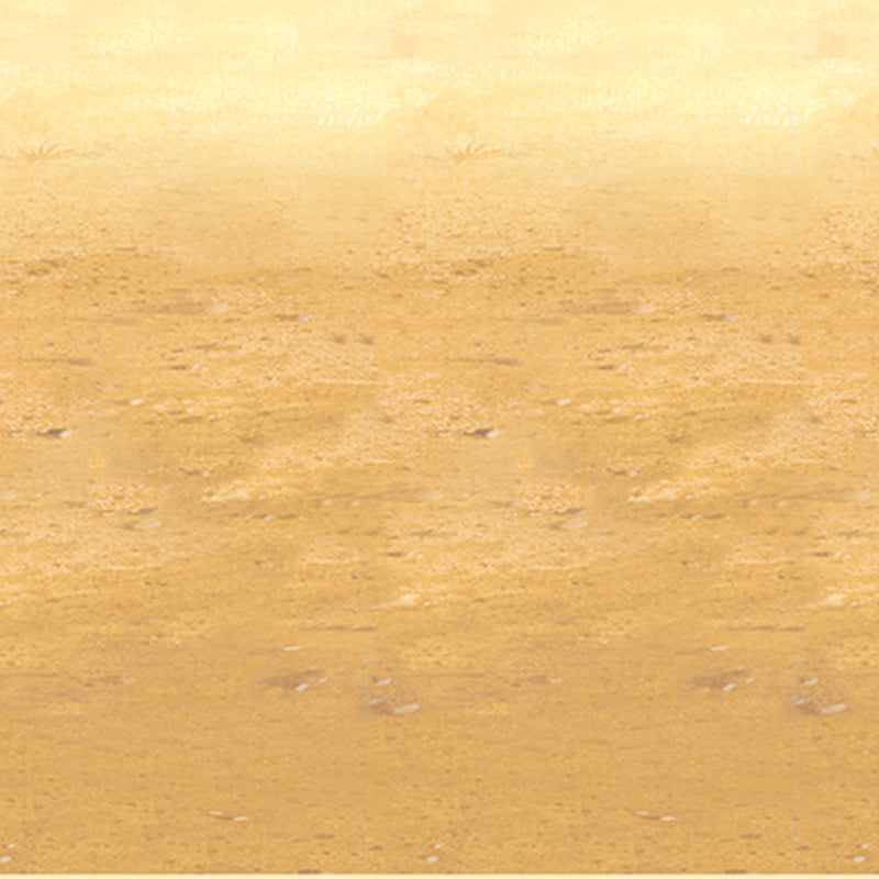 Desert Sand Backdrop by Beistle - Western Theme Decorations