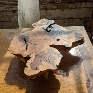 Maple Burl Slabs