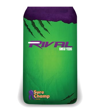 Rival Cattle Show Feed - Beast for Steers 50 lbs. (12.5%/4%)