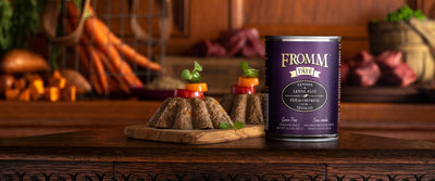 Fromm Gold Grain Free Venison and Lentil Pate Canned Dog Food 12 oz.