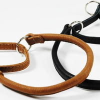 Dogline 20 in. Leather Martingale Collar