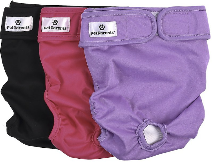 Washable Dog Diaper - Medium