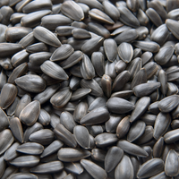 King Small Black Oil Sunflower Seed 40 lb.