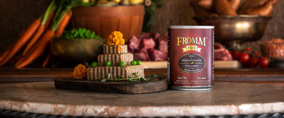 Fromm Gold Grain Free Beef and Sweet Potato Pate Canned Dog Food 12 oz.