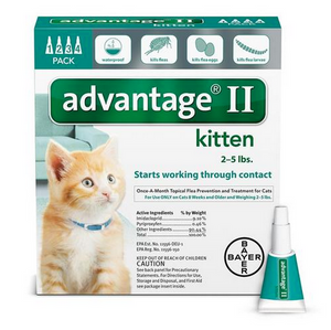Advantage II for Kittens 4 Pack - Turquiose