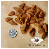 Fromm 4-Star Grain Free Chicken Au Frommage Recipe for Dogs