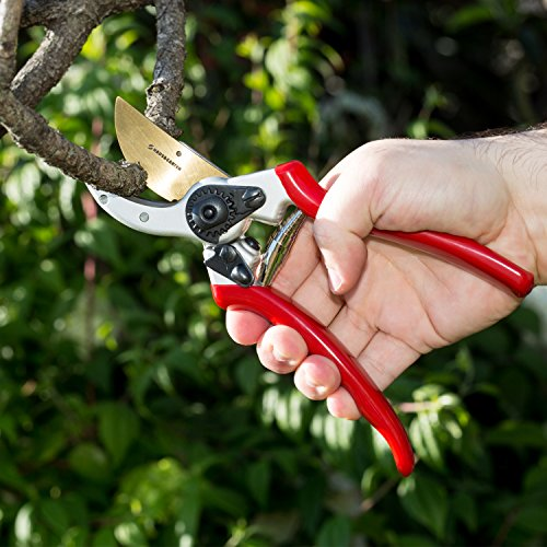 ClassicPRO Titanium Pruning Shears - Best Tree Trimmer, Garden Shears, Hand Pruner - Top Choice Bush Shrub & Hedge Clippers - Razor Sharp Bypass Secateurs, Ergonomic Gardening Tool for Effortless Cuts