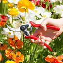 Image of ClassicPRO Titanium Pruning Shears - Best Tree Trimmer, Garden Shears, Hand Pruner - Top Choice Bush Shrub & Hedge Clippers - Razor Sharp Bypass Secateurs, Ergonomic Gardening Tool for Effortless Cuts