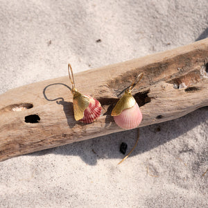Natural pink shell earrings with gold plating. By Takara.