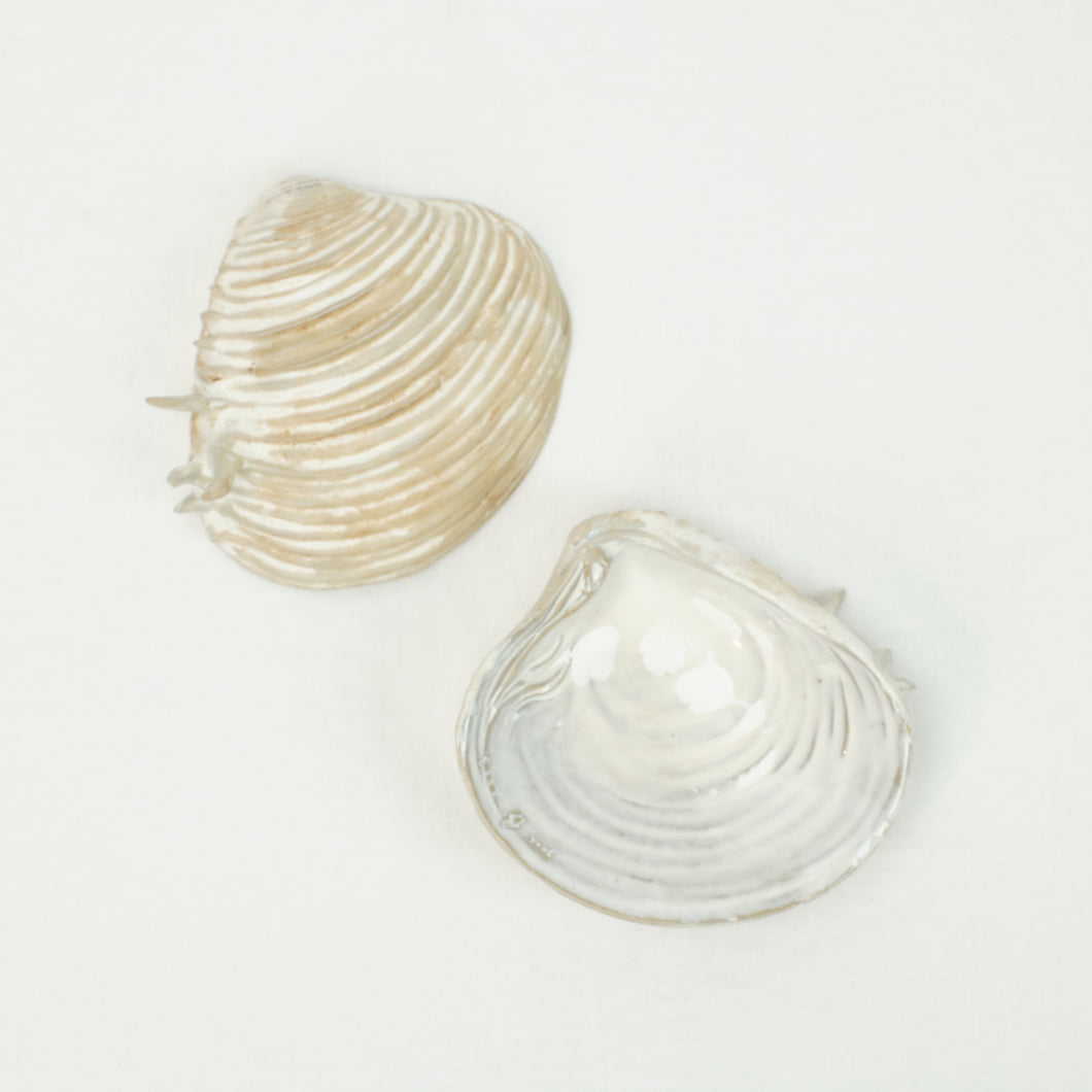 Ceramic Clam Shell Dish in sand and white glaze. Handmade in Thailand.