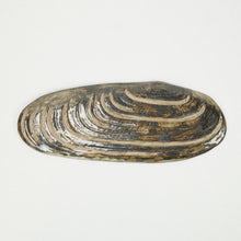 Load image into Gallery viewer, Underside of ceramic mussel platter, in natural brown tones. Oceanology Collection.