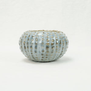 Yarnnakarn Oceanology Urchin Soup Bowl with pale blue glaze.