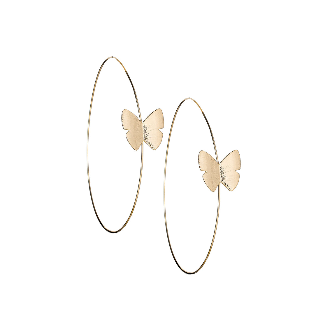 Continuous Butterfly Hoop 4