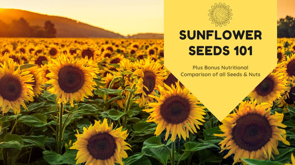 Why We Love Sunflower Seeds: Nutrition, Benefits, and More