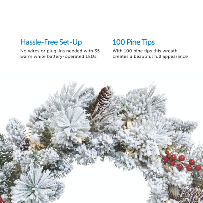 technology-Snow Dusted Berry 24-Inch Pre-Lit Christmas Wreath