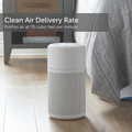 Air Purifier True HEPA with Washable Filter and Ionizer For Small Rooms