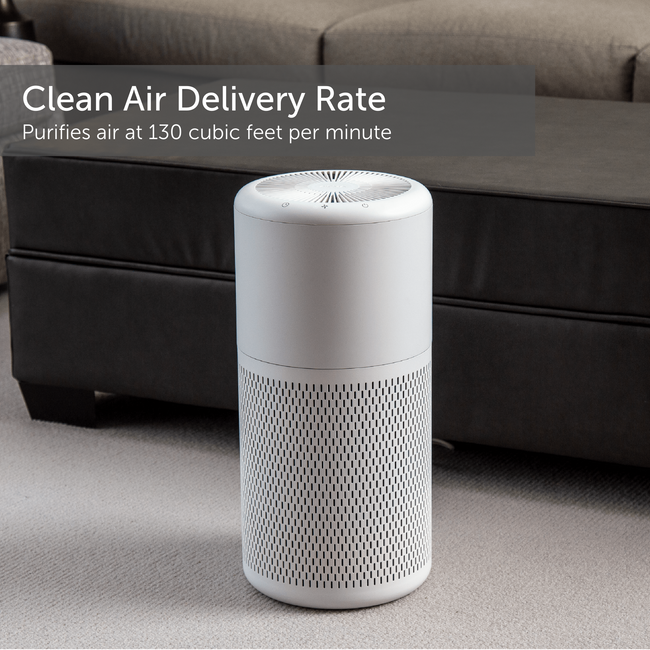 Air Purifier True HEPA With Ionizer And Washable Filter For Medium Rooms