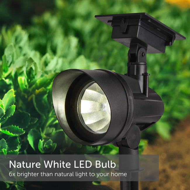 Solar powered LED Spot Light in a garden setting