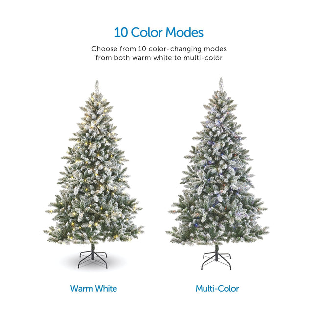 Color Modes Call Out, Top Center of Page. Two Flocked Cypress Tress- One with Warm White Lights and the Other with Multi-Color Lights. Showcasing Color Changing Effect. White Background.
