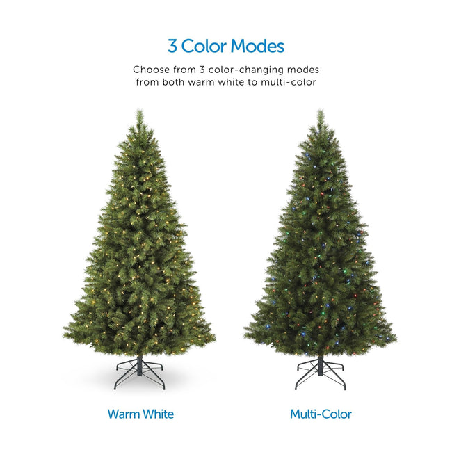 Color Mode Feature Call Out, Top Center of Page. Two Henry Fir Tree Images in Center one Depicting Warm White Lights, The Other with Multi-Color Lights. White Background
