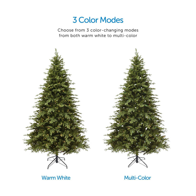 Color Mode Feature Call Out, Top Center of Page. Two Appalachian Pine Tree Images in Center one Depicting Warm White Lights, The Other with Multi-Color Lights. White Background