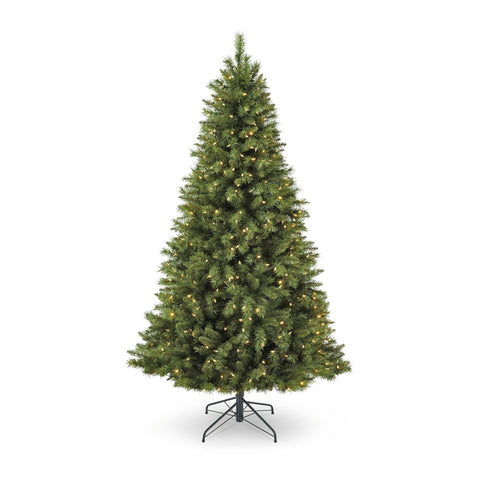 NOMA 7 Ft Henry Fir Christmas Tree with Warm White Lights. White Background.