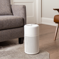Small air-purifier resting on a carpet in a living room setting