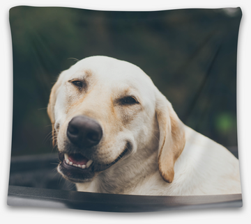 Happy Pup Tapestry - CollegeWares