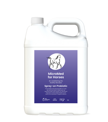 MicroMed for Horses Acute Care – 5ltr