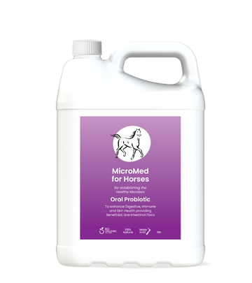 MicroMed for Horses Everyday Care – 5ltr