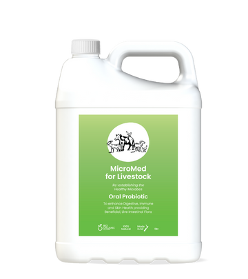 MicroMed for Livestock Everyday Care – 5ltr