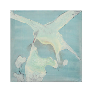 A fine art reprint of arctic terns. Gallery Sesselja