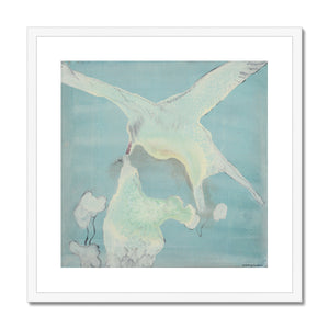 Artic tern Framed & Mounted Print