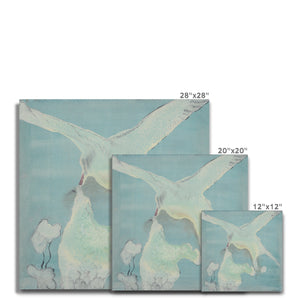 Artic tern Canvas
