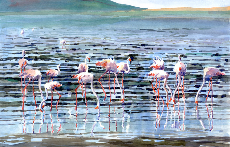 Lake Nakuru in the Evening