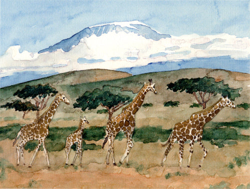 Giraffes of the Serengeti