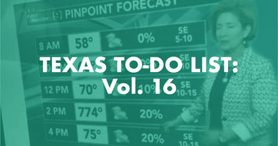 Texas To-Do List: Vol. 16