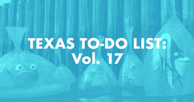 Texas To-Do List: Vol. 17