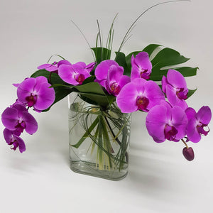 Mothers Day Orchid Lovers Vase