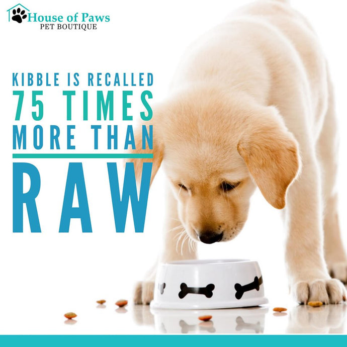 Kibble is recalled 75 times more than raw