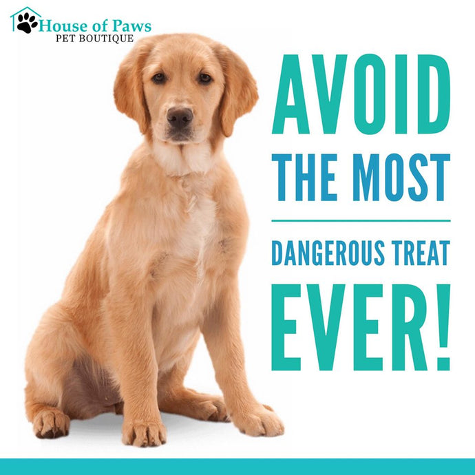 Avoid the most dangerous treat ever